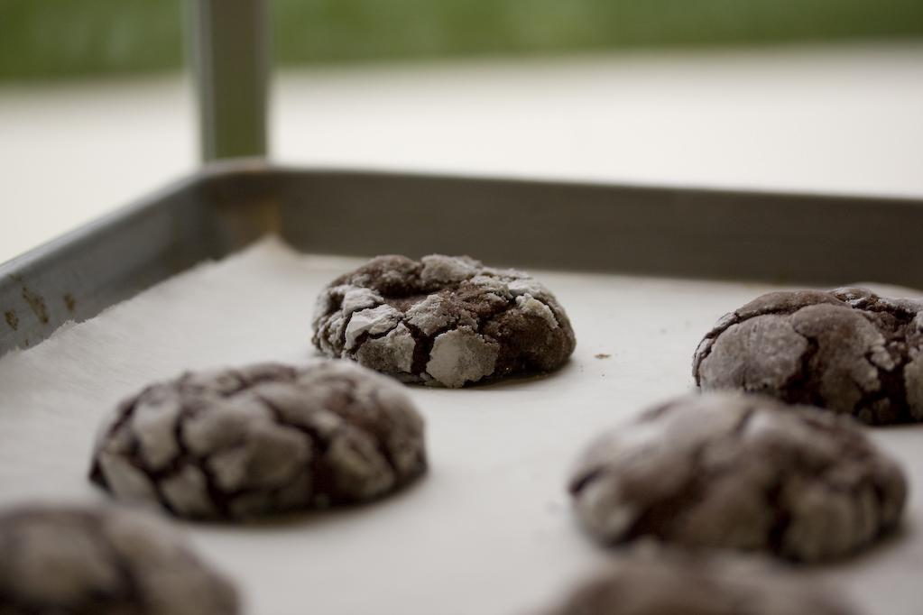 cookies_2009_1
